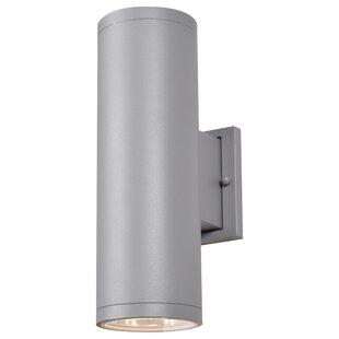 Orren Ellis Haarstick 2-light LED Outdoor Scone