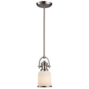 Darby Home Co Claflin 1-Light Bell Pendant