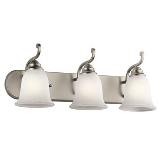 Best Haffenreffer 3-Light Vanity Light By Alcott Hill