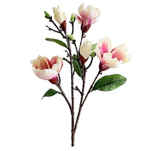 Magnolia silk flowers wayfair rustic silk magnolia stem mightylinksfo Choice Image