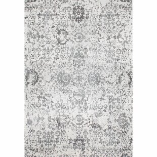 Duclair Faded Gray Area Rug by One Allium Way