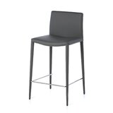 Digeni Bar & Counter Stool (Set of 2) by Latitude Run