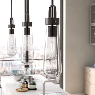 Trent Austin Design Alguno 1-Light Novelty Pendant