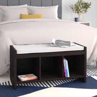 Terrific Claudia Storage Bench With Cushion Dailytribune Chair Design For Home Dailytribuneorg
