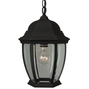 Oakhill 1-Light Traditional Outdoor Hanging Lantern