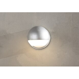 Brayden Studio Borror LED Outdoor Sconce