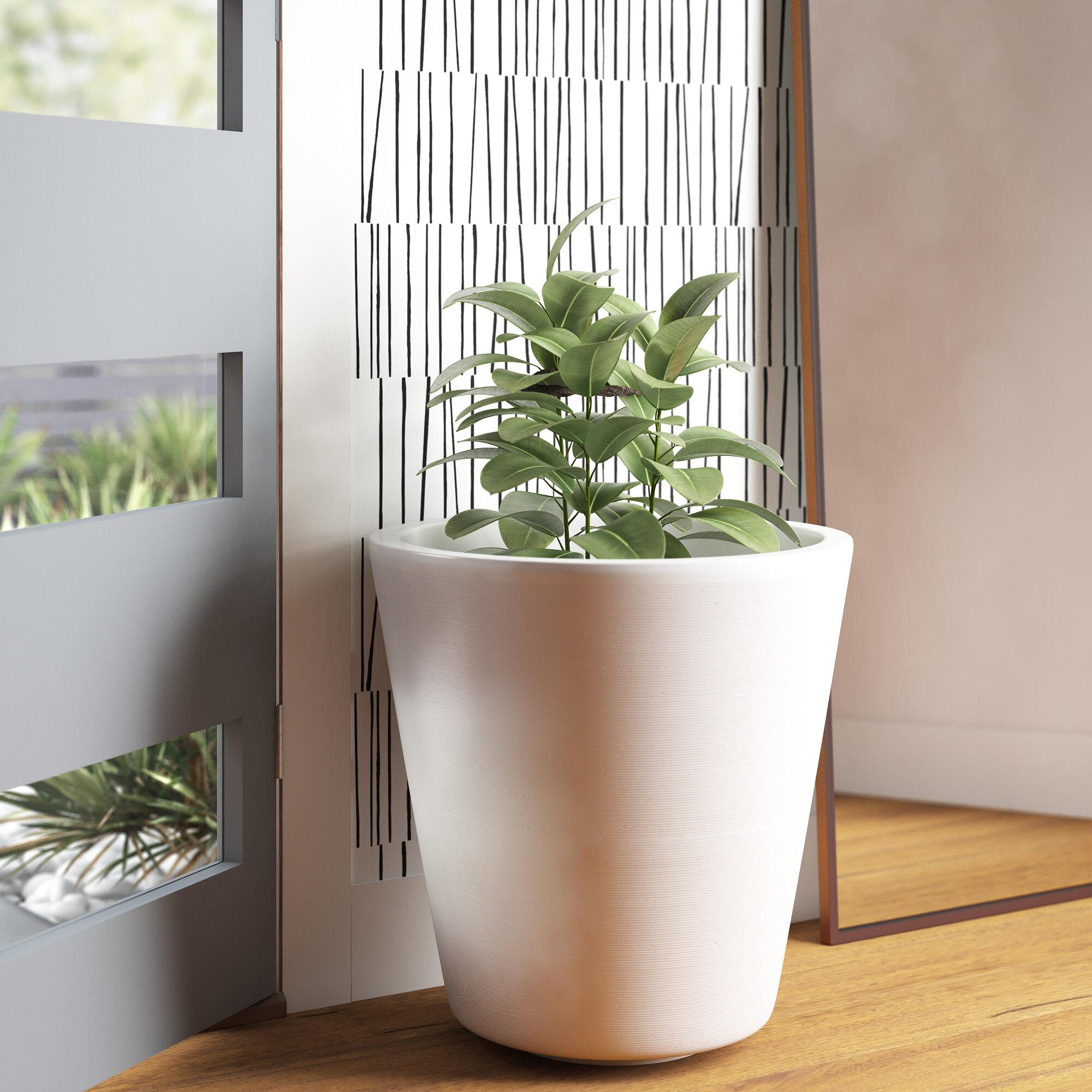 Sienna Resin Pot Planter Reviews Allmodern