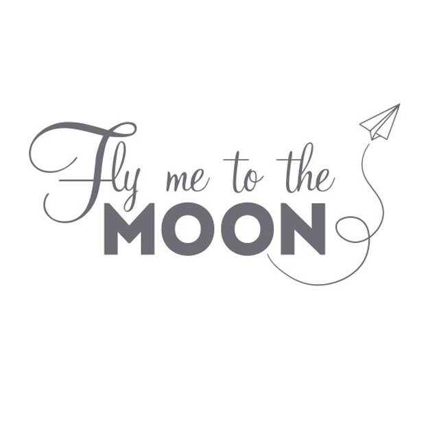 To moon the me fly Fly me