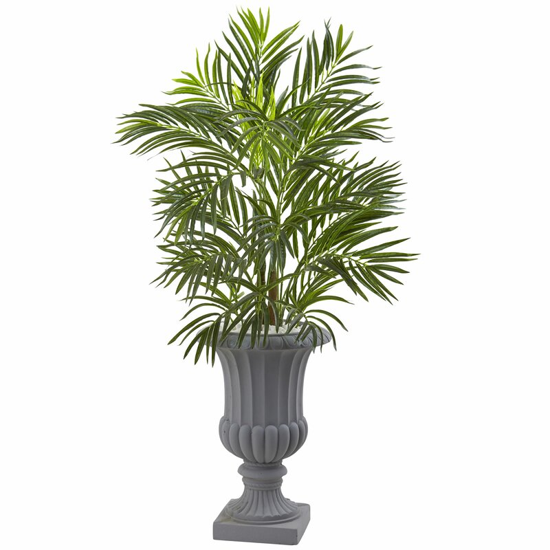 entracing palm tree type house plant. Areca Palm Tree in Urn Nearly Natural  Reviews Wayfair