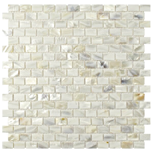 """Mother Of Pearl Mosaic Nightstand Im Obsessed: EliteTile Shore 1"""" X 1"""" Seashell Mosaic Wall Tile In White"""