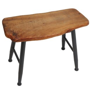 Ilsa Accent Stool by Millwood Pines