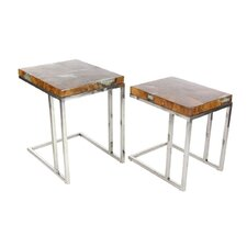 Teak/Stainless Steel 2 Piece End Table Set by Cole & Grey