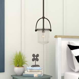 Beachcrest Home Bolton 1-Light Urn Pendant