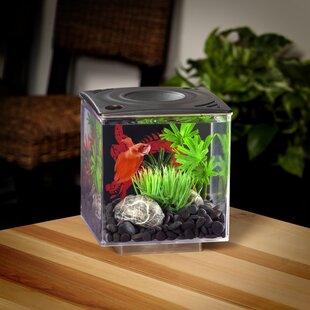 10 gallon fish tank kit wayfair
