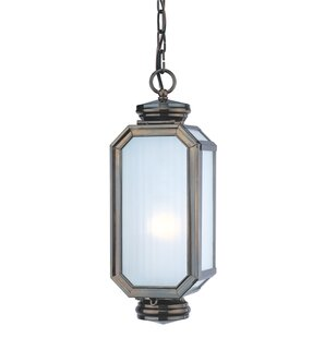 Darby Home Co Natoma 2-Light Outdoor Pendant