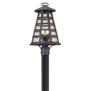 17 Stories Neelesh Outdoor 4-Light Lantern Head