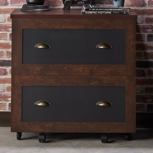 Zakhar 2 Drawer Lateral Filing Cabinet