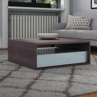 Capucine Coffee Table With Storage By Metro Lane