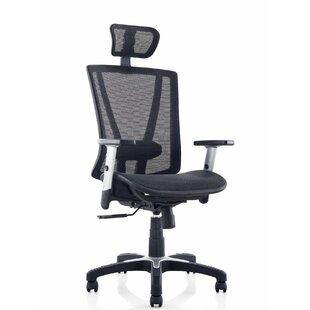 Ergomax Office Mesh Desk C..