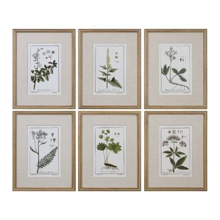 f33b090e9de8  Floral Botanical Study  6 Piece Framed Graphic Art Print Set on Wood in  Green