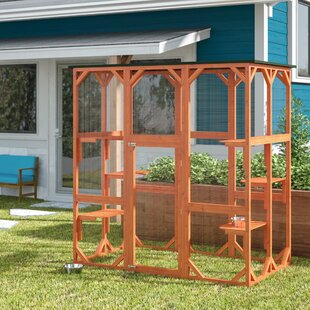 Lowery Cat Cage With Door