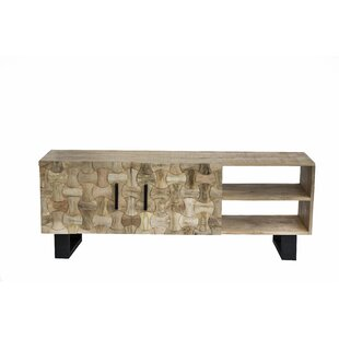 Best Reviews Burkesed TV Stand for TVs up to 60 by Union Rustic Reviews (2019) & Buyer's Guide