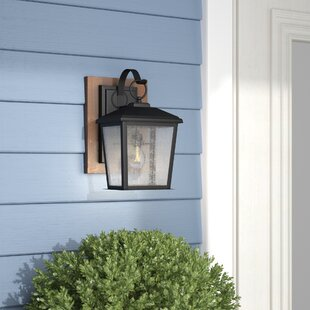 Brass Cannon 1-Light Outdoor Wall Lantern