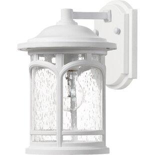 Sheppard Outdoor Wall Lantern