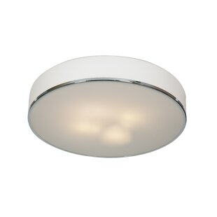 Orren Ellis Mizpah Modern 4-Light Outdoor Flush Mount