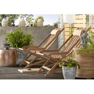 Nathen Swing Lounger by Mistana