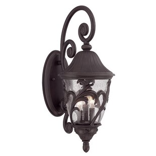 Buy luxury Berumen 1-Light Outdoor Wall Lantern By Fleur De Lis Living
