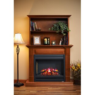 Rio Grande Electric Fireplace ..