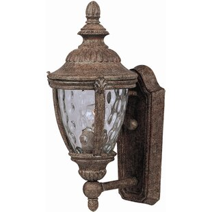 Velma 1-Light Outdoor Sconce