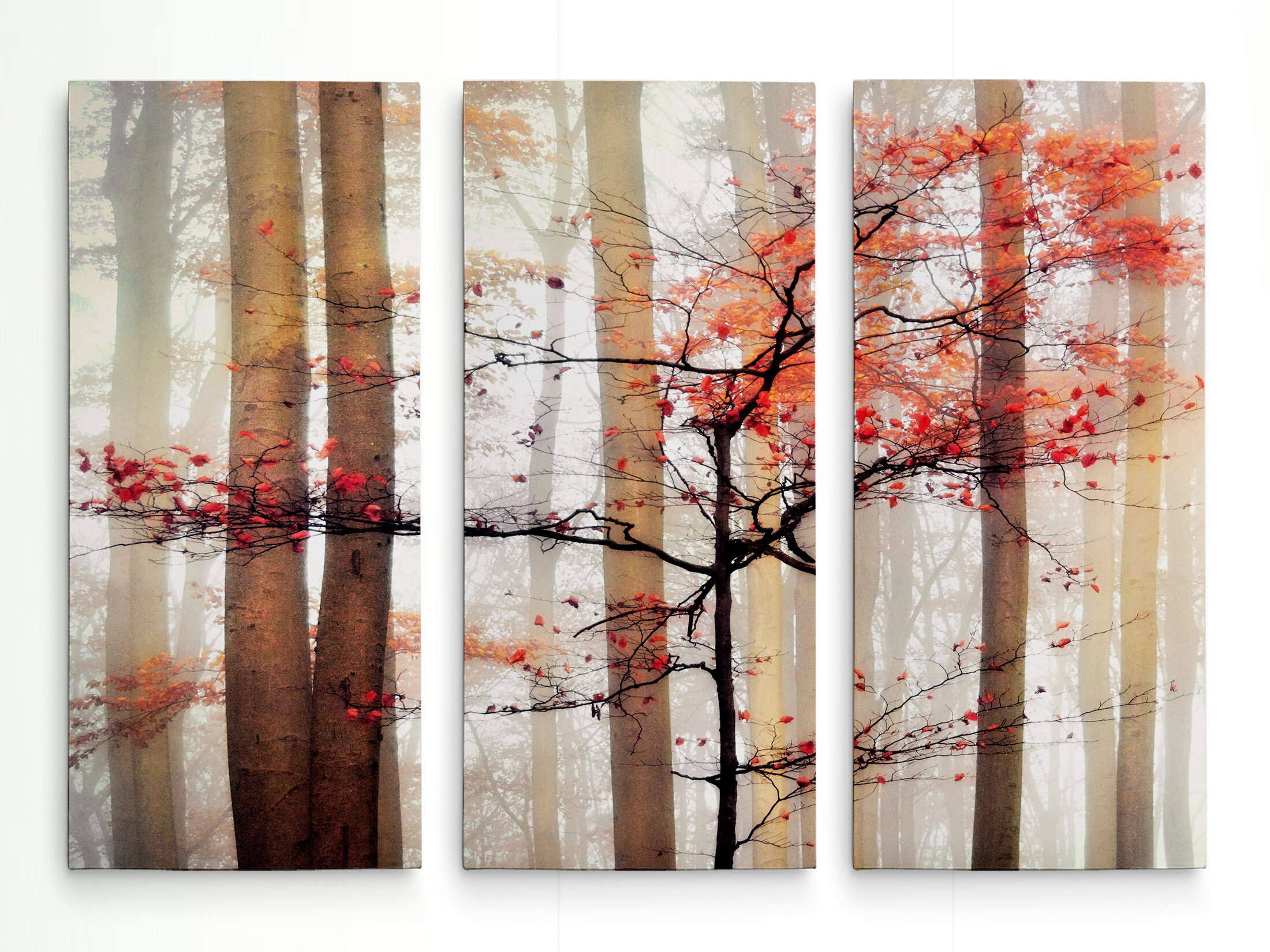 Latitude Run Orange Awakening 3 Piece Wrapped Canvas Photograph Print Set Reviews Wayfair