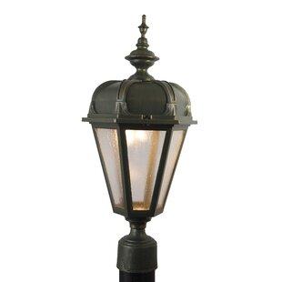Flannigan Lantern Head by Charlton Home