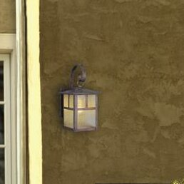 Junior Exterior 1-Light Outdoor Wall Lantern