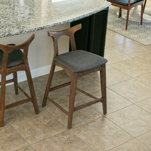 Fulda 24.5 Bar Stool (Set of 2)