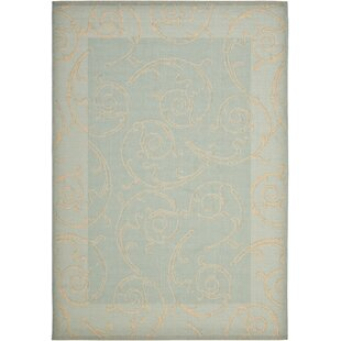 Find Alberty Aqua / Cream Indoor/Outdoor Rug By Three Posts