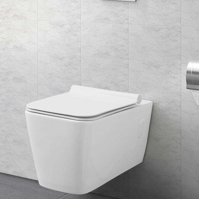 Concorde Dual Flush Elongated Wall Mount Toilet Seat Included