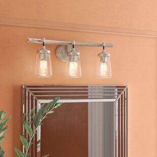 Brayden Studio Omeara 3-Light Vanity Light