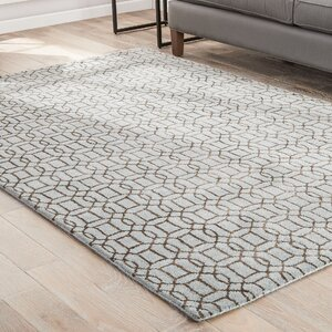 Birch Hill Hand-Tufted Blue/Brown Area Rug