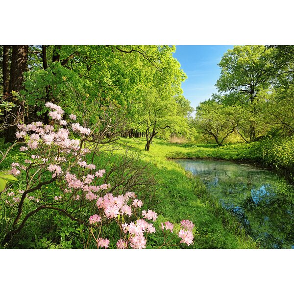 Union Rustic Motter Park In The Spring 8 4 L X 144 W 8 Panel Wall Mural Wayfair Ca