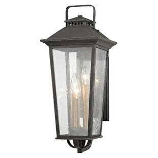 Janell 3-Light Outdoor Wall Lantern By Darby Home Co Outdoor Lighting