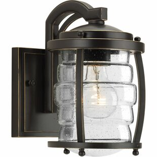 Bargain Celestine 1-Light Outdoor Wall Lantern By Loon Peak