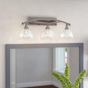 Blankenship 3-Light Vanity Light by Fleur De Lis Living