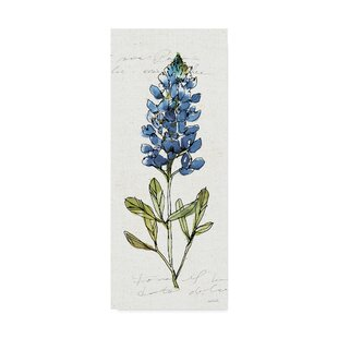 afb051576816a 'Texas Bluebonnet IV' Watercolor Painting Print on Wrapped Canvas