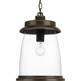 Annora 1-Light Outdoor Hanging Lantern