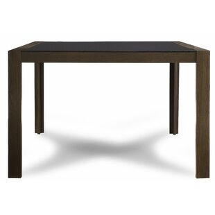 Brayden Studio Sirena Counter Height Dining Table