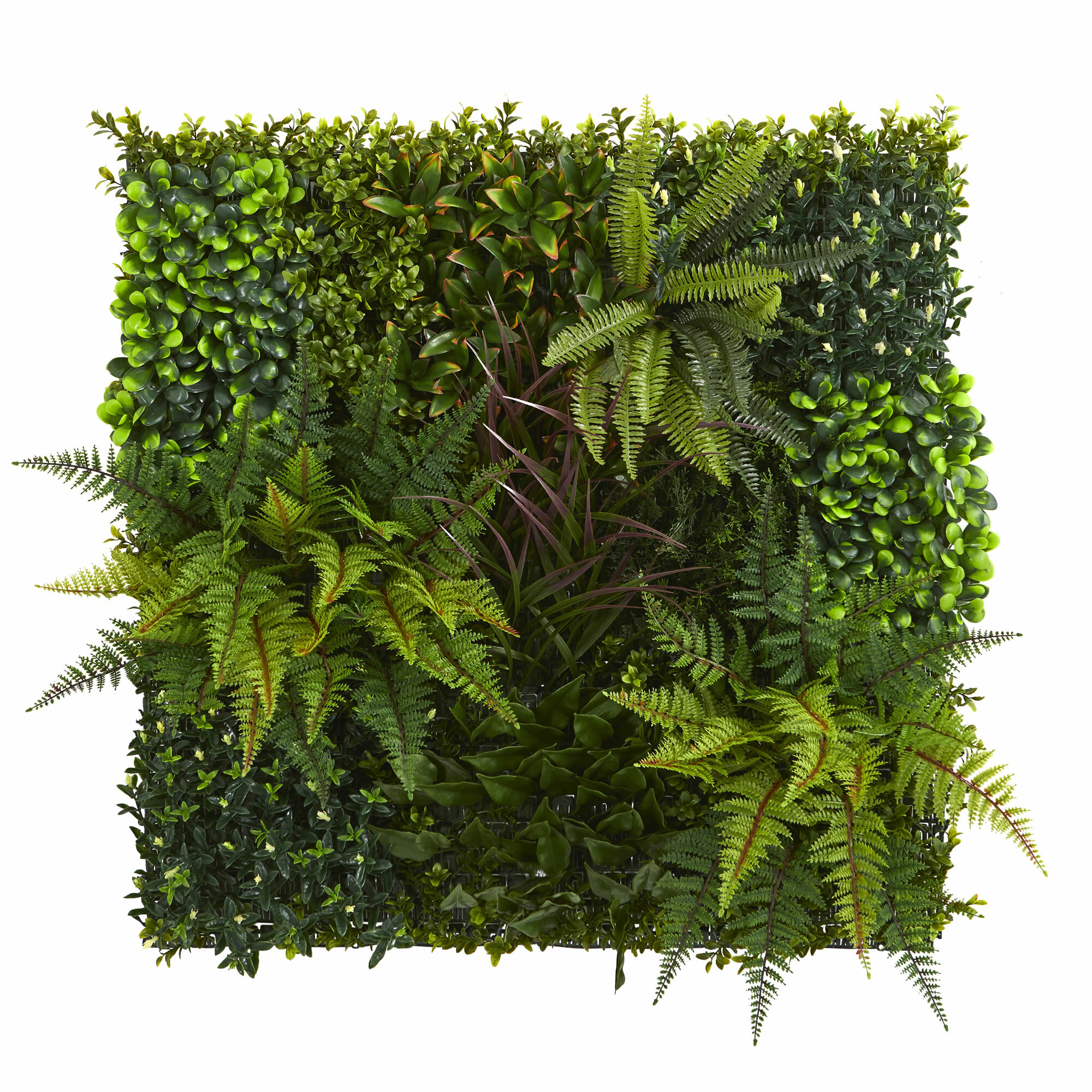 Beau Artificial Living Wall Succulent Plant
