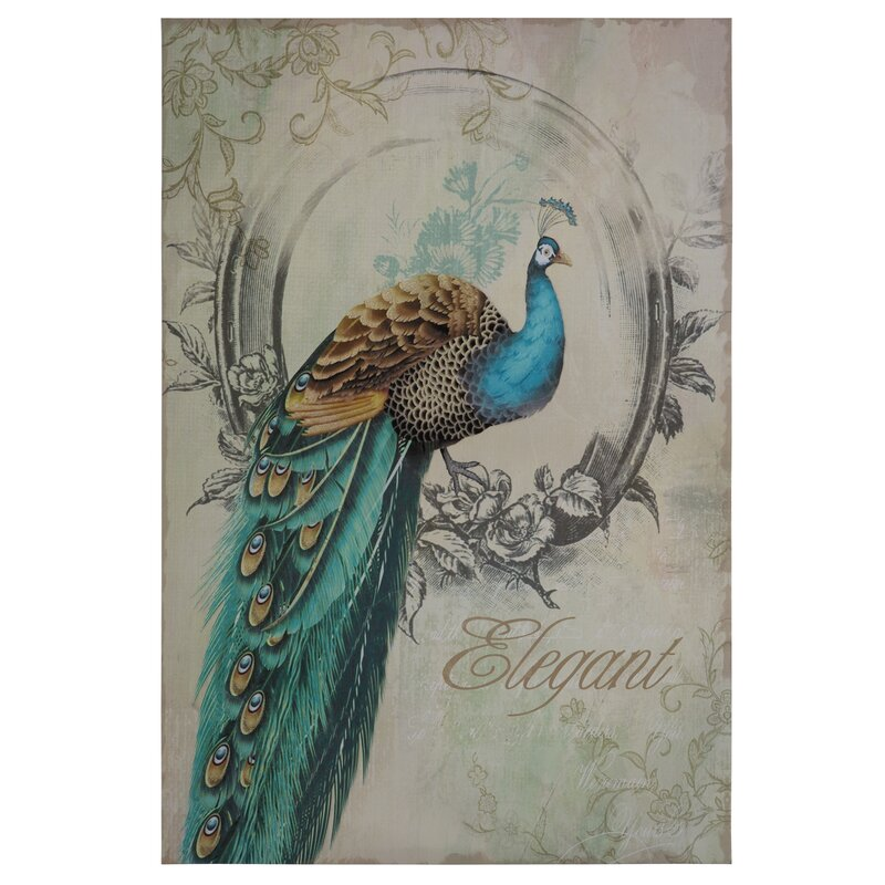 Ophelia Co Peacock Poise I Graphic Art On Wrapped Canvas Reviews Wayfair
